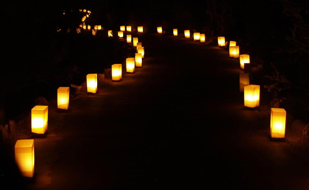 Luminaria light a pathway